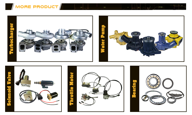 Good Performance Excavator Heavy Parts Swing Motor Assembly