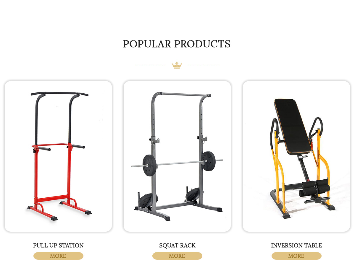 Functional Power Tower-Professionnel Station de musculation Training Rack Crossfit-ness