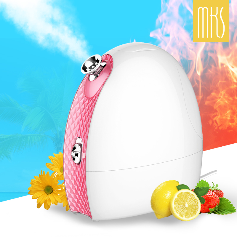 Factory wholesale Eco-friendly portable facial steamer for factory use