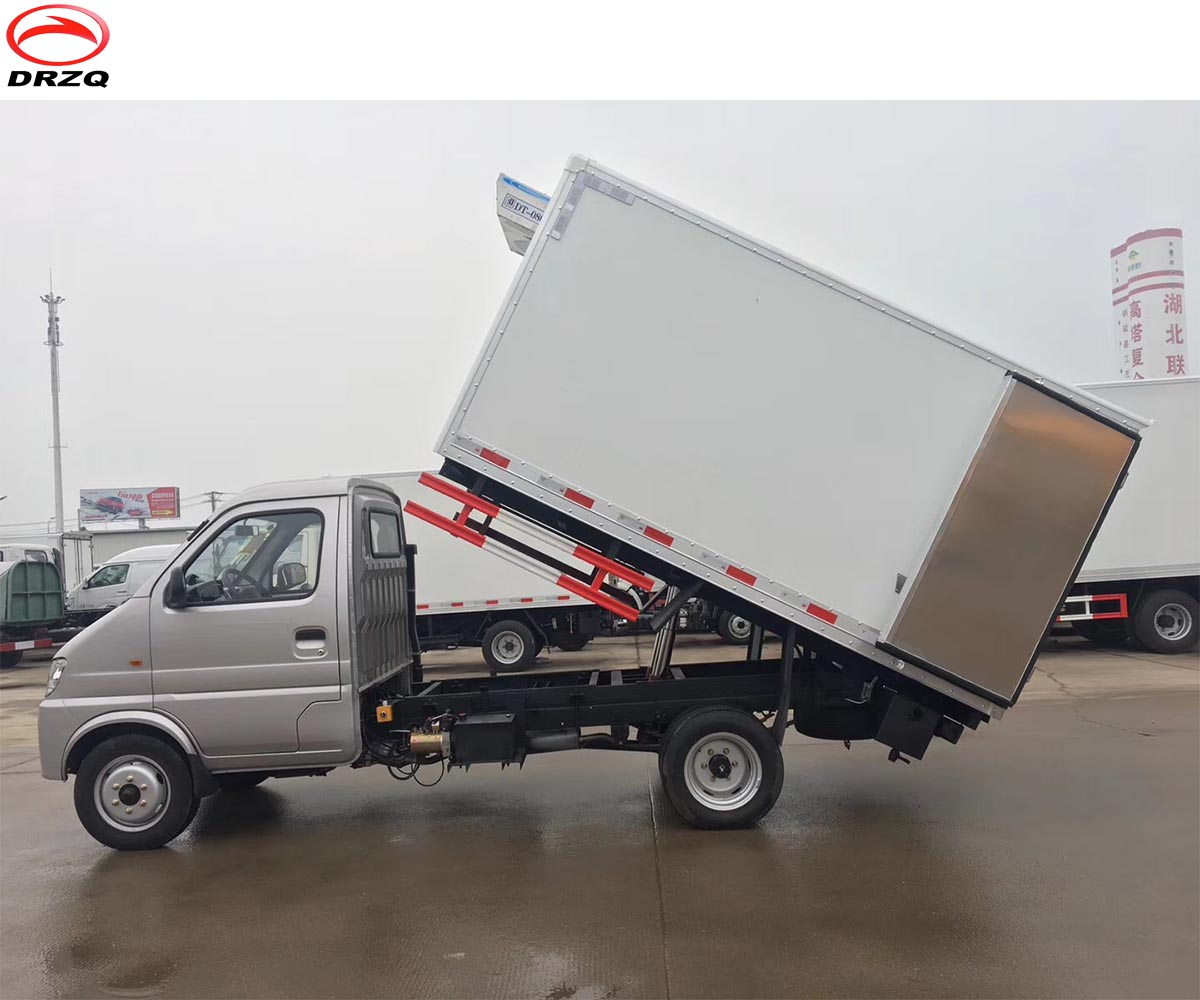 City,Town And Village Using Cheap Price Gasoline Fuel Mini Capacity Frozen  Van Cargo Truck For Meat,Fish And Sea Food - Buy Gasoline Fuel Frozen Mean