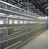 chicken egg layer cages/ Poultry Farm House Design