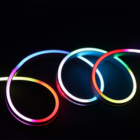 Addressable Rgb 5v SK6812IC flexible neon led strip light