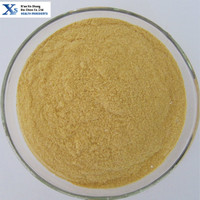 High Quality GMP Kosher Natural Instant Soybean Powder