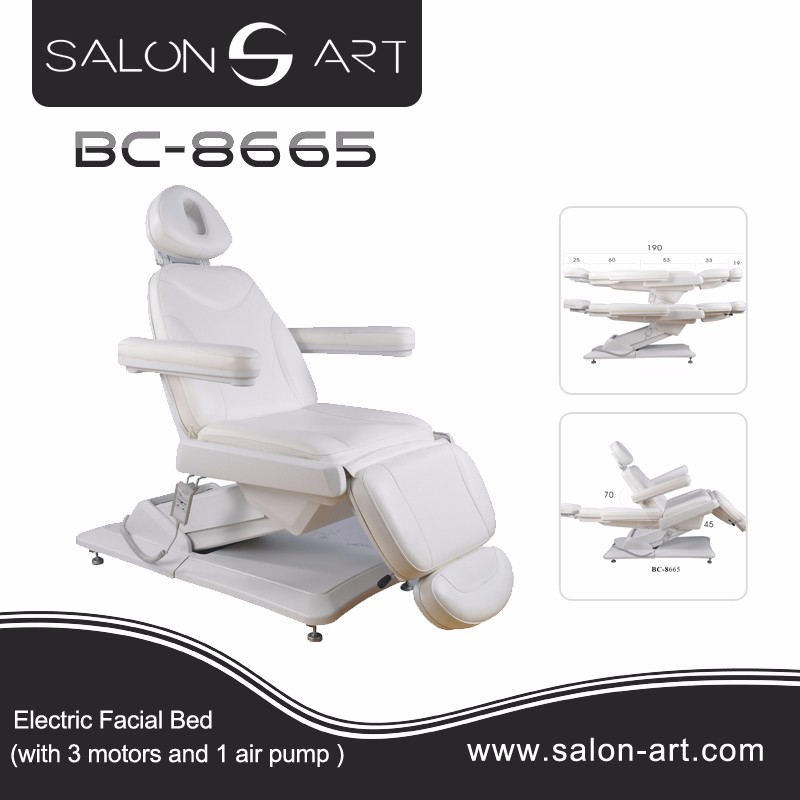 Beauty Salon and Spa Use Electric Facial Chair
