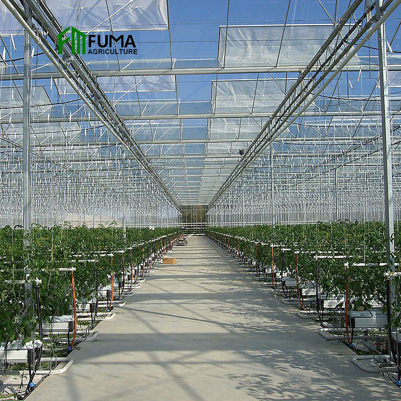 large multi-span commercial shading and heating system agriculture used reinforced glass greenhouse for sale