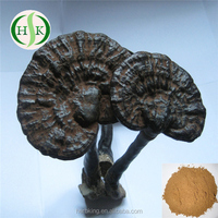 Pure Reishi Powder Professional Supply Reishi Mushroom Powder