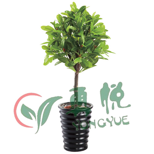silk artificial camellia bonsai plant wholesaler manufacturer for indoor outdoor decoration