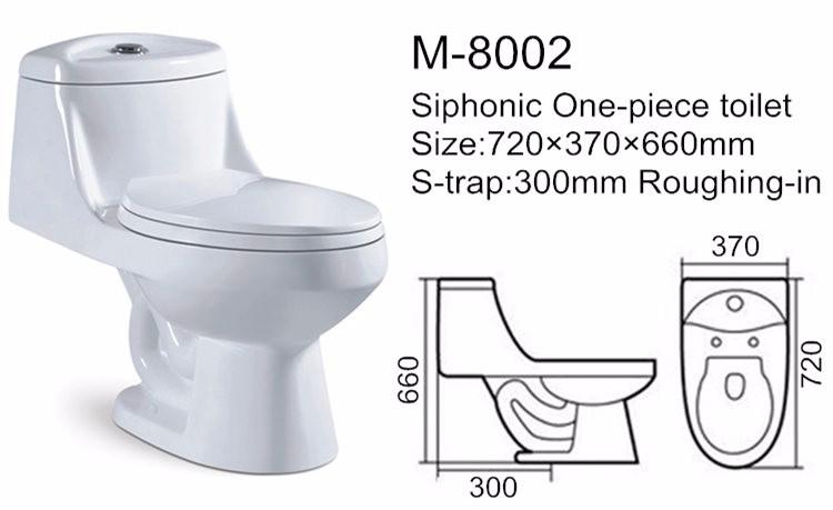 Water Ridge One Piece Dual Flush Toilet Cera Toilet Seat