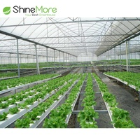 SHINEMORE The Cheapest Hot Sale Mappower Agricultural Plastic Greenhouse