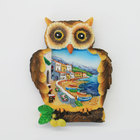 Creative 3D Souvenir Resin Cities Fridge Magnet In Owl Shape