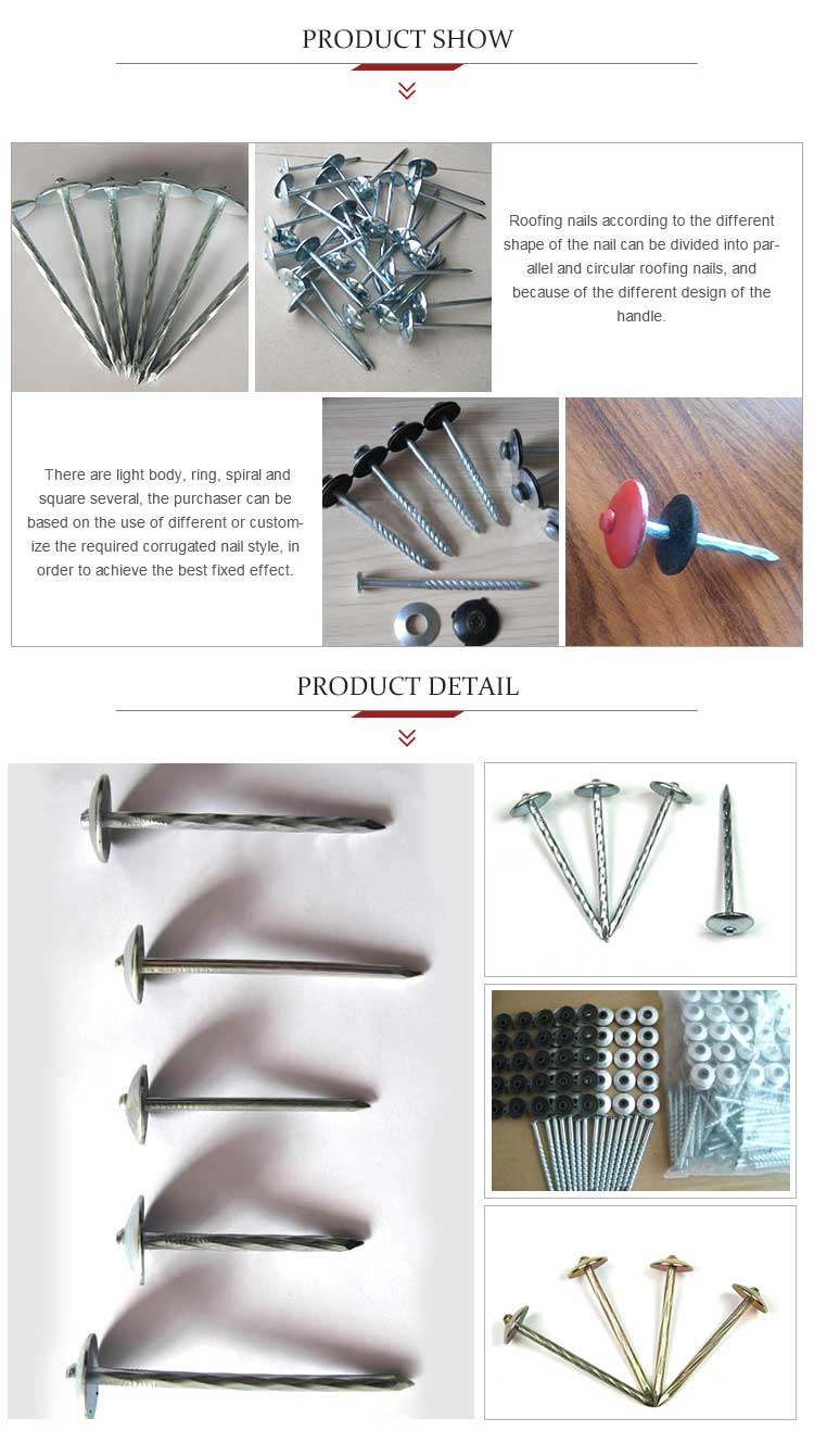 Best Price smooth shank Galvanized steel roofing nails