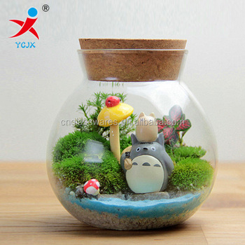 Clear Glass Jar For Terrarium With Lid Buy Clear Glass Jar For