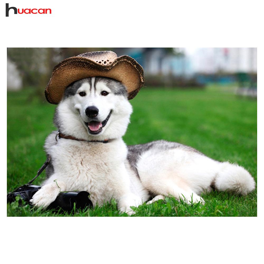 husky chien photos promotion achetez des husky chien photos promotionnels sur. Black Bedroom Furniture Sets. Home Design Ideas