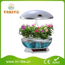 calidad garantizada flor hidropnico jardn
