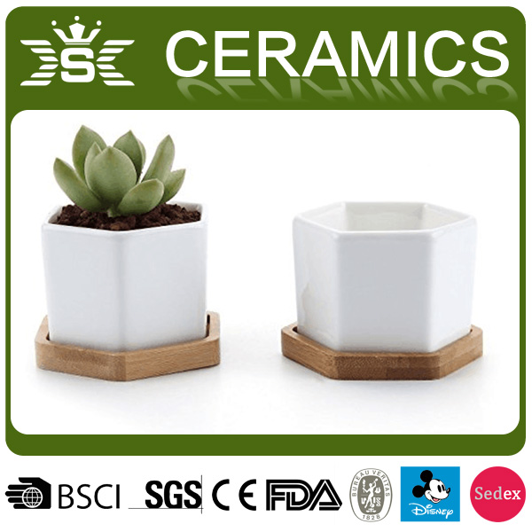 2017 White Ceramic Cactus Plant Pot With Bamboo Tray