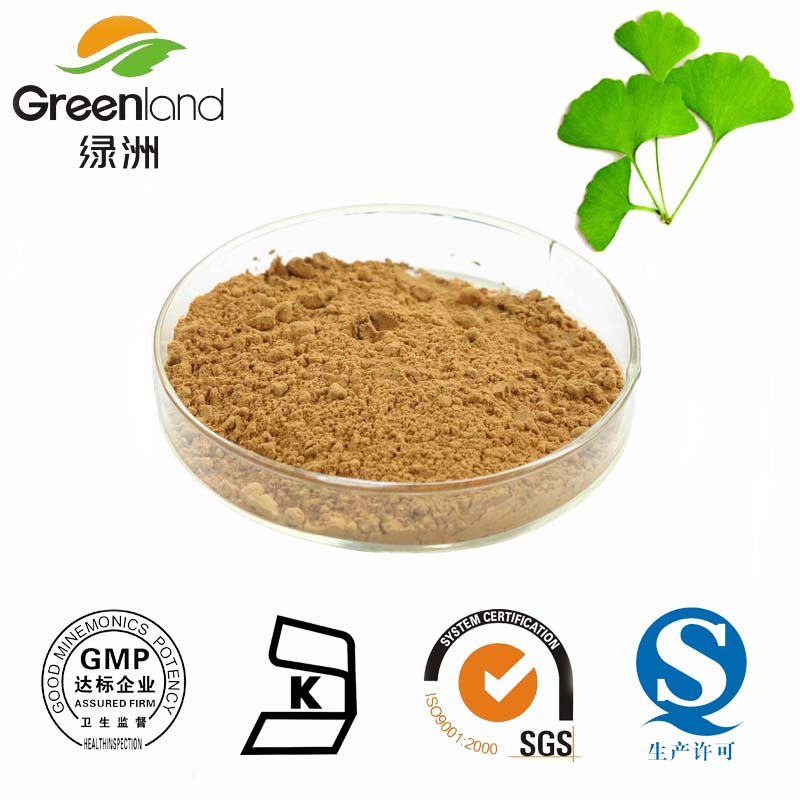 100% Natural Herbal Extract Ginkgo Leaf Extract/Ginkgo biloba extract