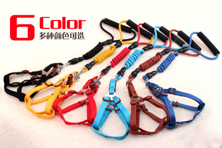 Amazon hot style nylon single-color pet leash for small and medium sized dog collars