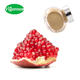 40% Ellagic Acid Pomegranate Peel Powder Extract