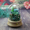 yarn ball green rose in glass dome