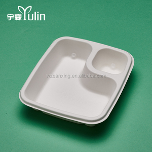 Hot Sell Disposable Biodegradable Bagasse Lunch Tray With Low Price