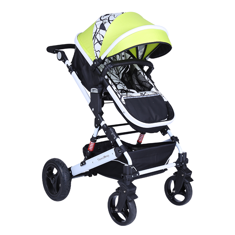 That can adult baby stroller share