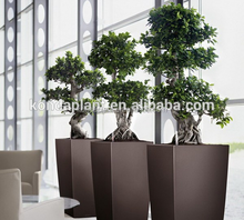 Decorative per interni cinese <span class=keywords><strong>bonsai</strong></span>/<span class=keywords><strong>banyan</strong></span> <span class=keywords><strong>bonsai</strong></span>/ficus microcarpa/ficus albero artificiale