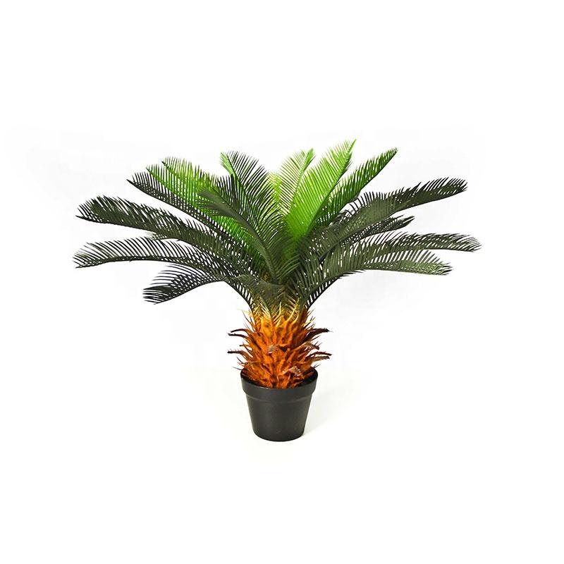 Cycas Revoluta Bulbs With King Sago Palm Artificial Cypress Tree