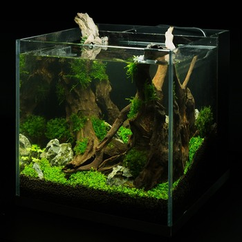 17 L wholesale glass aquarium fish tank supply