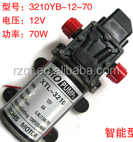 12V cheap dc diaphragm mini water pumps for cleaning