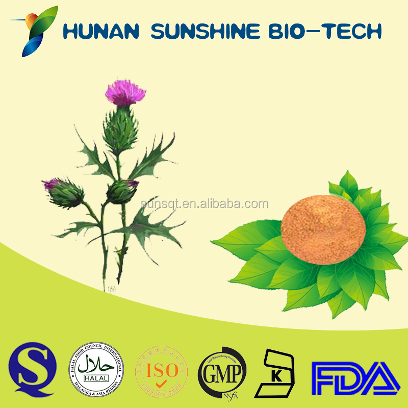 herbal extract silymarin powder extract for treating the death cap mushroom poisoning