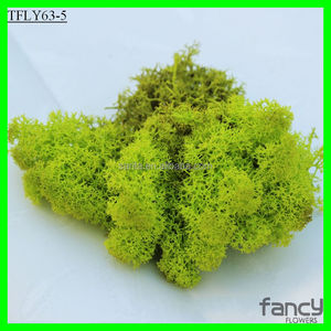 15 Colors for Selcetion 500Gram A box wholesale preserved moss