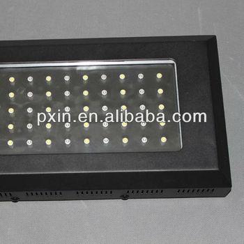 Pinxin 120 Watt It2080 Zeeaquarium Led-verlichting 55*3w - Buy ...