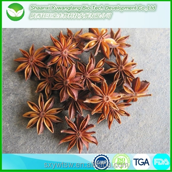 wholesale supply anise extract with liquid form and powder