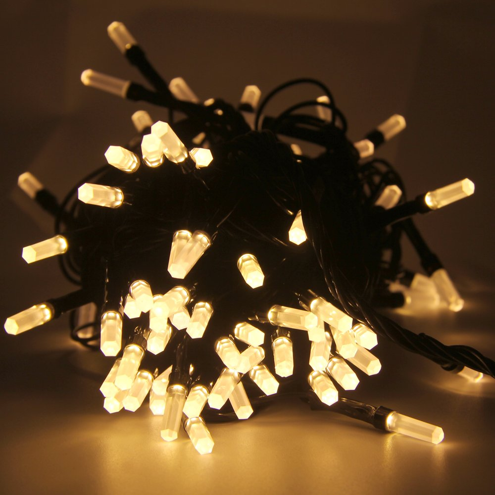 RECHING String Light,Seasonal Lighting,Rope Lights,Warm White,10Meter(32ft),100LED,7 Modes Change,Starry Light Fairy Light for Wedding,Xmas Party/House/Garden Seasonal Décor - Waterproof