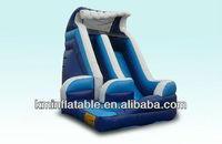 curvy water slide inflatable