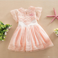 Girls The new summer skirts Cotton Lace Princess Dress baby summer lace party dresses European Style Top Quality Girl sleeveless