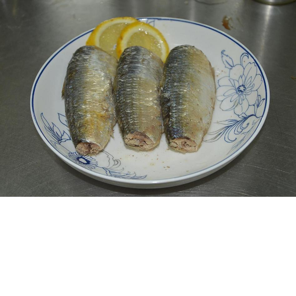 Quality fish canned sardine in brine canned sardine