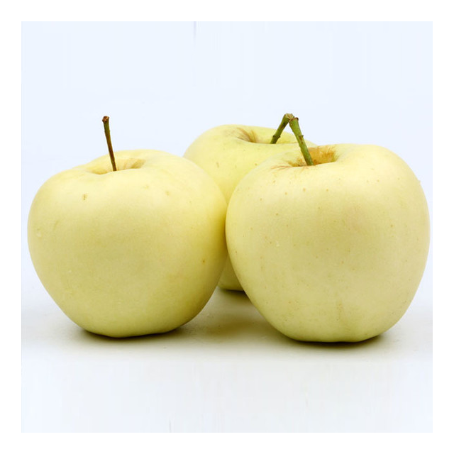 Fresh golden apple fruit price for sale