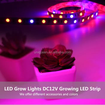 Led Grow Lights Dc12v Growing Led Strip 5050 Ip20 Ip65 Ip68 Plant Growth Light For Greenhouse Hydroponic Plant Led Grow Light Buy Dc12v 5050 Growing