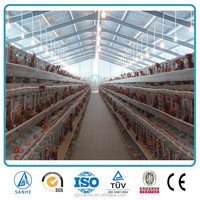 steel structure prefabricated farm shed / poultry shed / dairy shed for cow,chicken,pig,sheet