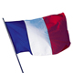 custom flags polyester french flag with pole holder