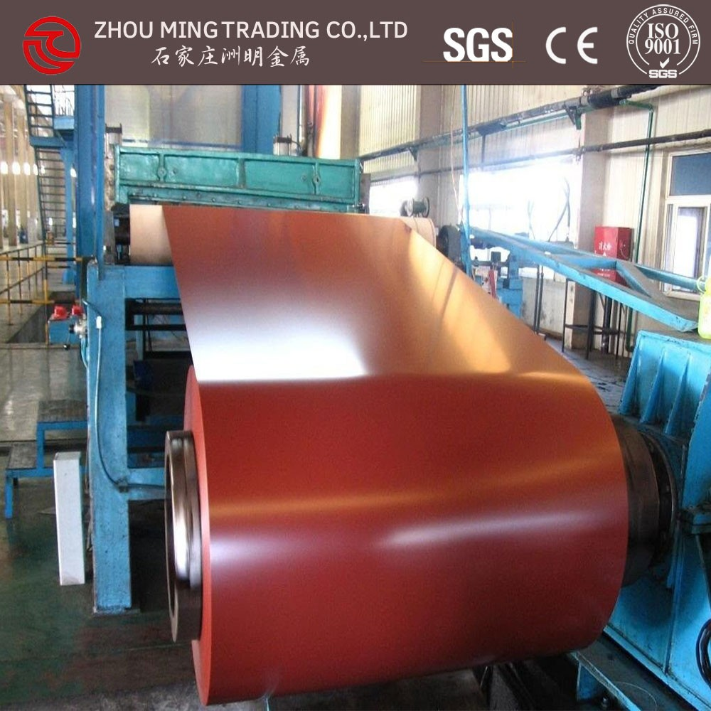 manufacture of prepainted galvanized metal steel sheet in roll/china factory