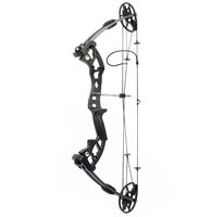 High quality Junxing archery outdoor shooting compound bow