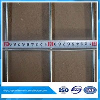 chinese supplier Galvanized welded wire mesh panel for fence