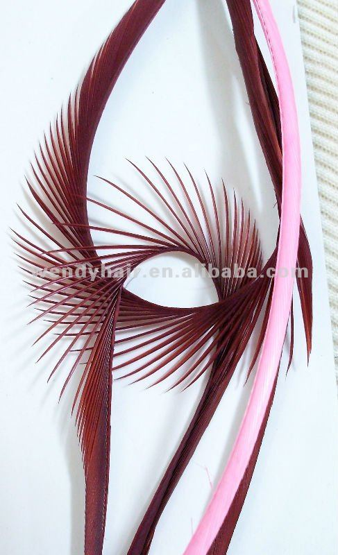 Hair Extension Feathers Hair Extension Feathers Suppliers And