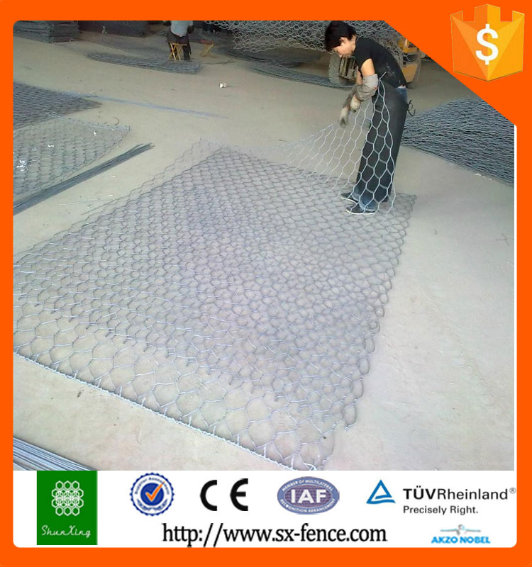 Double twist hexagonal mesh netting