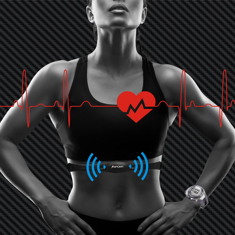 Non Coded Heart Rate Monitor Chest Strap Belt (similar To Polar T31) - Buy  Heart Rate Monitor Chest Strap,Heart Rate,Chest Strap Product on