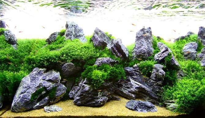 china fabrikant aquarium aquarium decoratie steen aquaria en accessoires product ID 60240606259