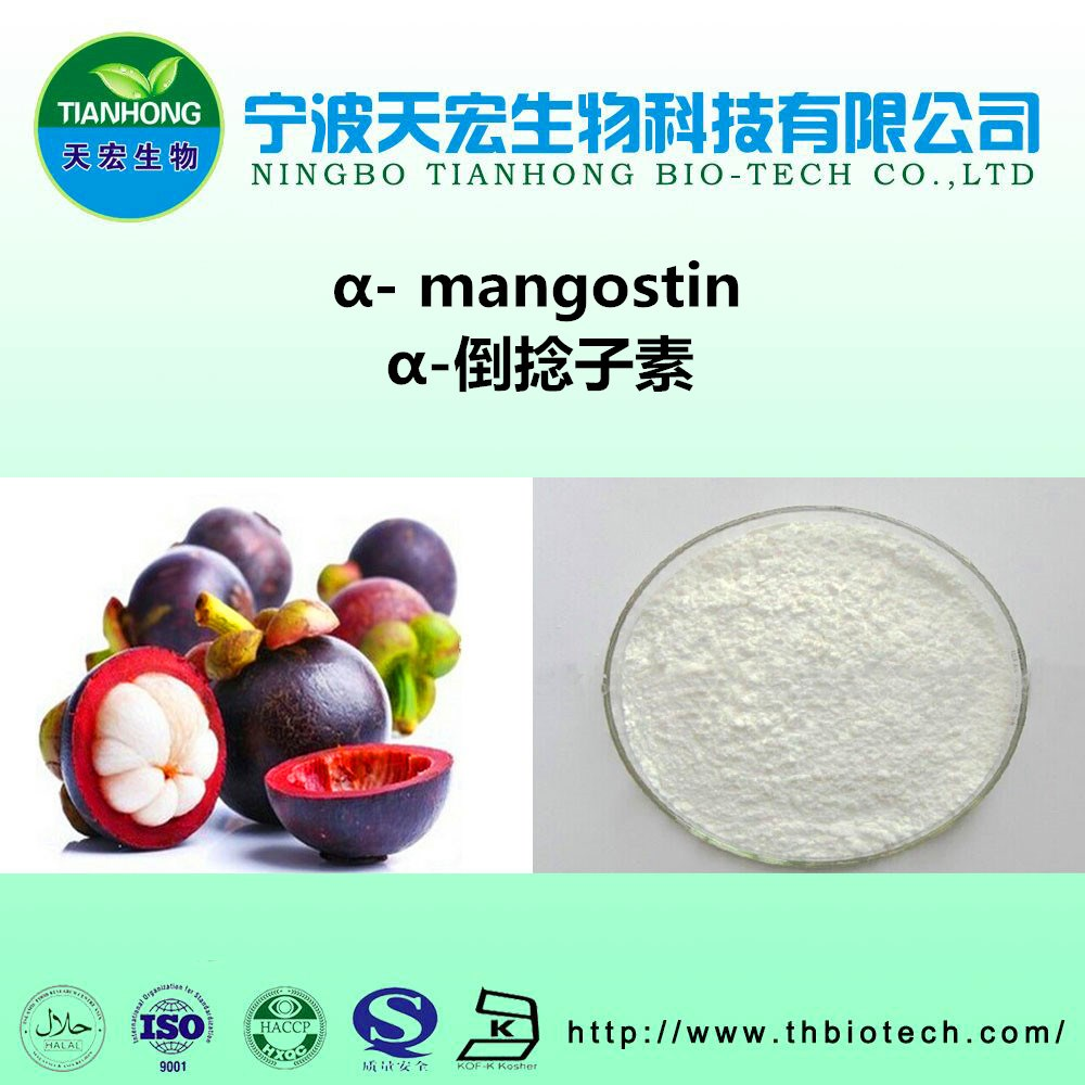 10%-98% mangostin Provides the high quality Mangosteen Extract Antioxidant anti aging