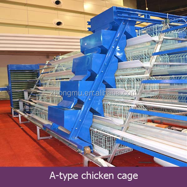 layer chicken house/used chicken house equipment/chicken house